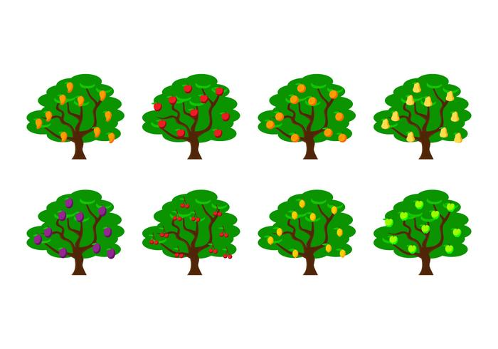 700x490 Fruit Tree Vector Illustration