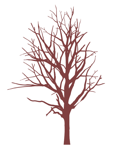 500x604 Winter Tree Branches Photoshop Brushes