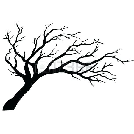 450x450 Leafless Tree Outline