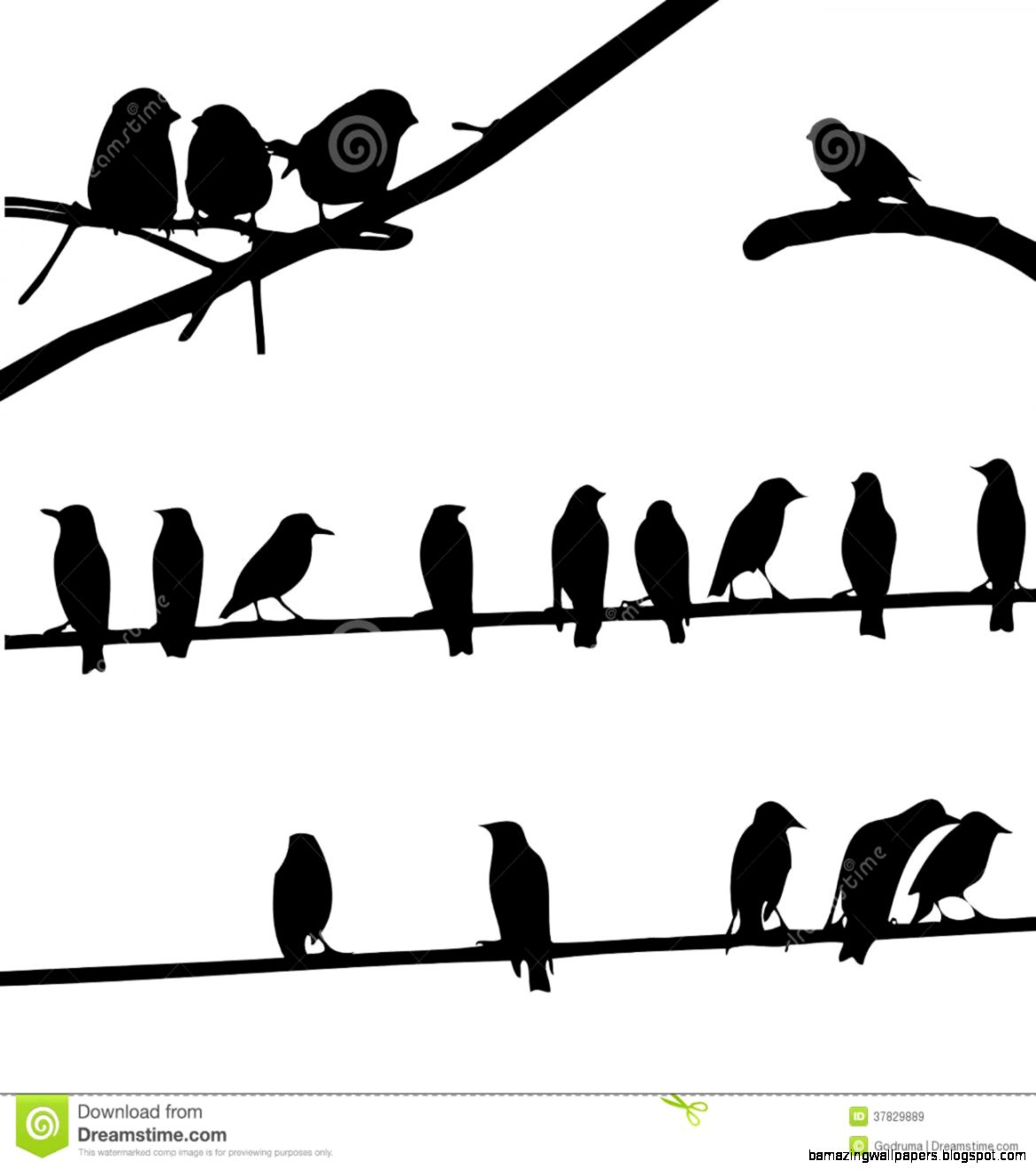 1170x1320 Bird On A Wire Silhouette Clipart Amazing Wallpapers
