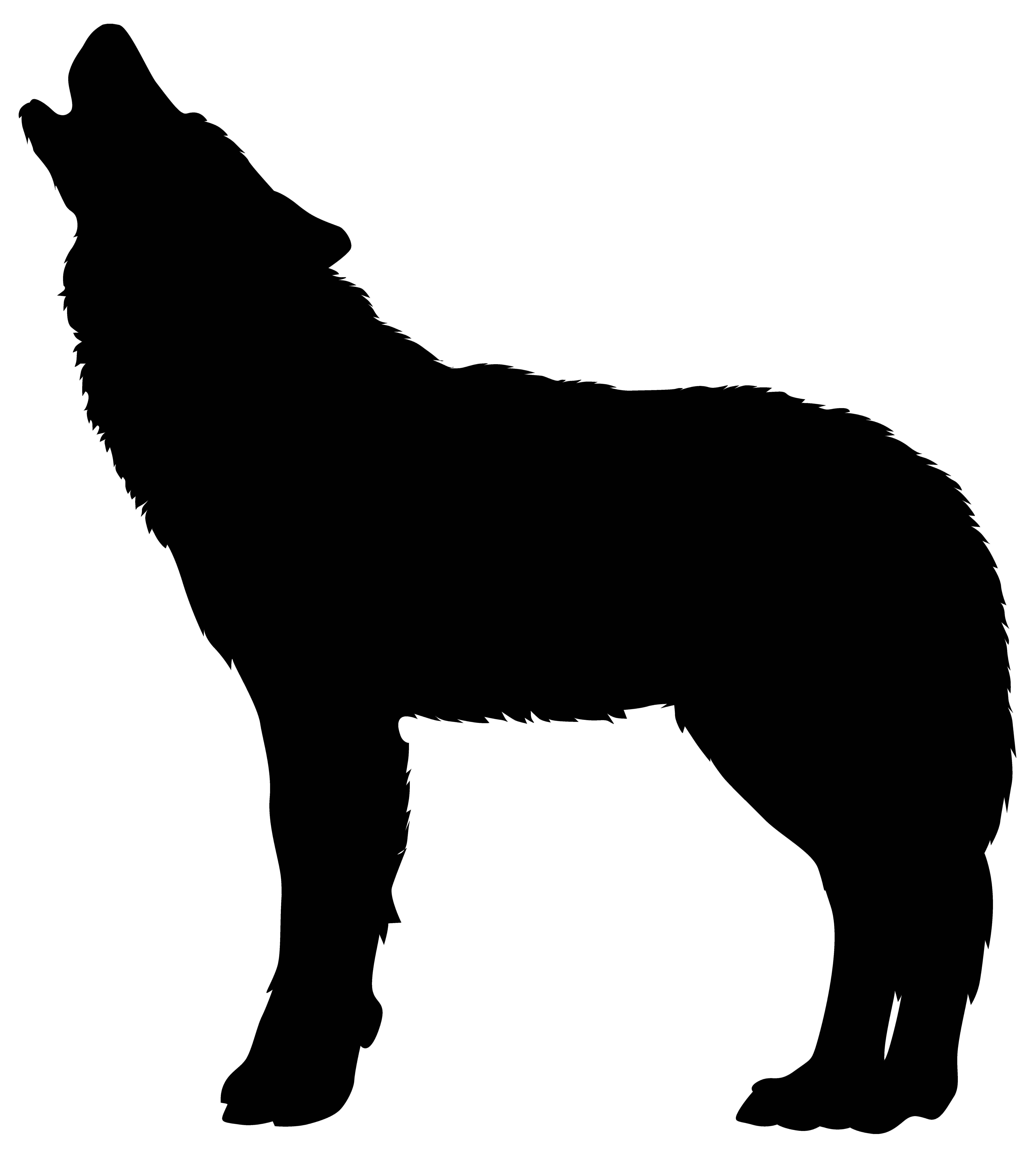 7197x8000 Wolf Clipart Png