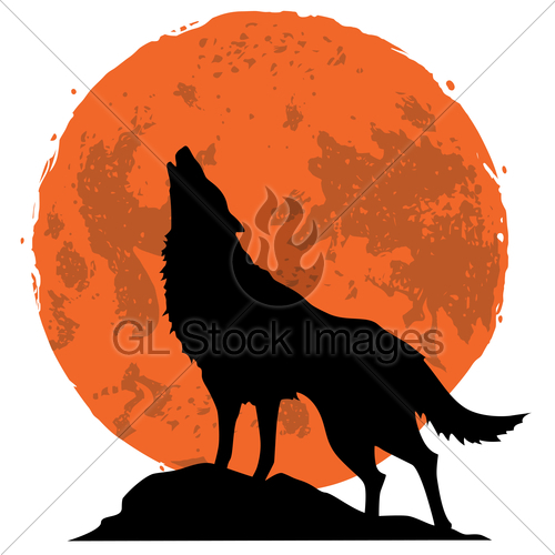 500x500 Wolf Howling At The Moon In The Midnight Vector · GL Stock Images