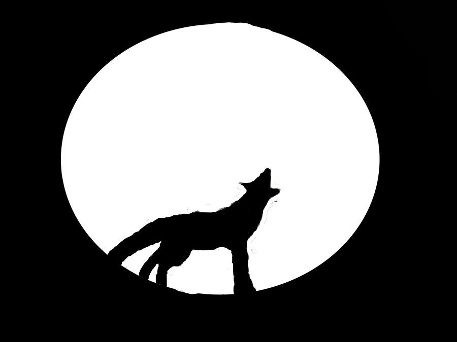 900x675 Wolf Howling