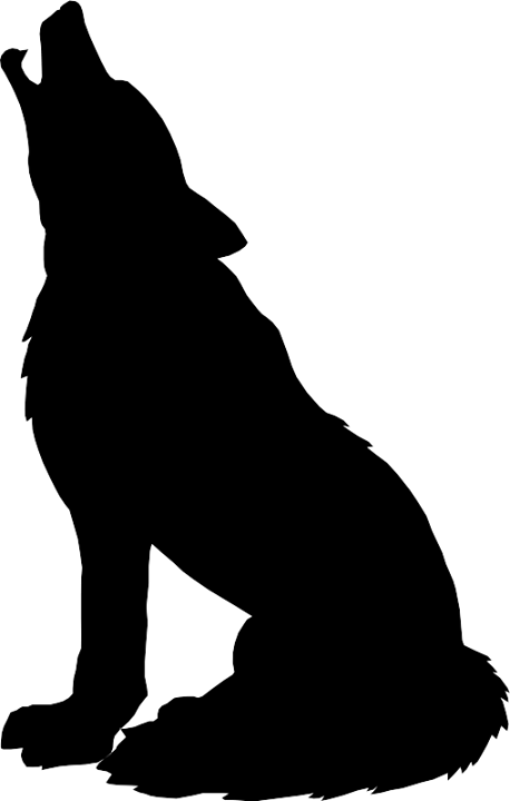 458x720 Wolf Silhouette. Winter Is Coming Silhouette, Wolf
