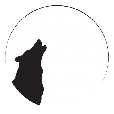 400x400 Wolf Moon 2 Gobo Projected Image