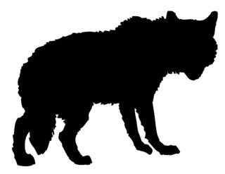 320x247 Wolf Silhouette