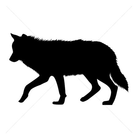 450x450 Free Wolves Stock Vectors Stockunlimited