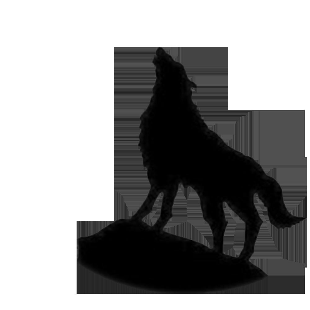 1000x1000 Indian Wolf Samsung Galaxy S9 Screensaver Wallpaper