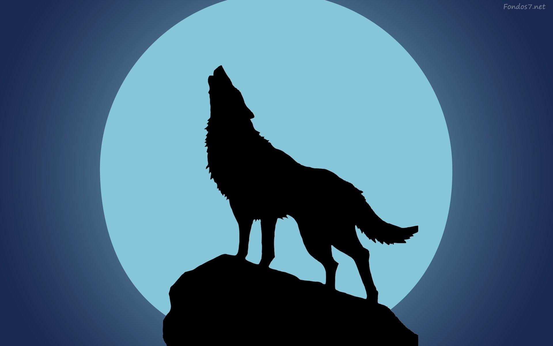 1920x1200 Wolf Rain