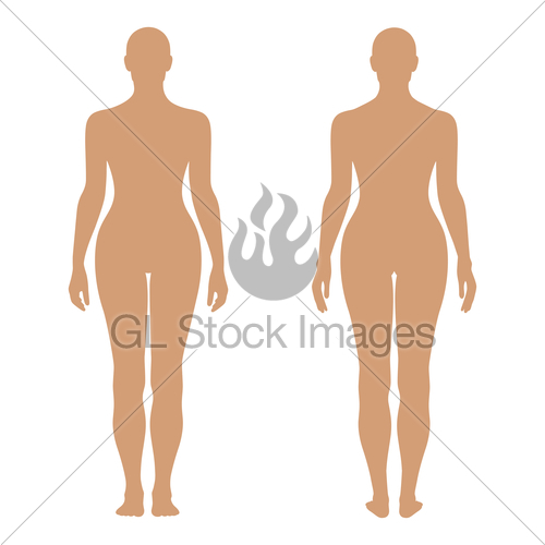 500x500 Fashion Woman's Solid Template Figure Silhouette (Front Amp Gl