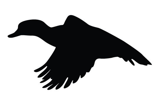 550x354 Duck Flying Silhouette Vector