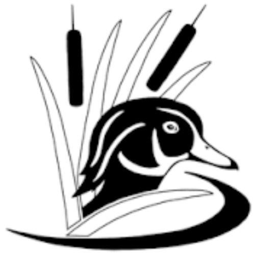 500x500 Wood Duck Marsh Decal, Duck Hunting, Taxidermy Sticker, Waterfowl