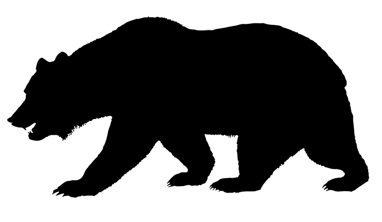 768x446 Silhouette Of Bear Jogging Through The Forest. A Forest Animal