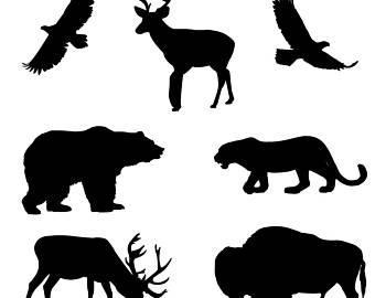 340x270 Woodland Bear Svg Etsy