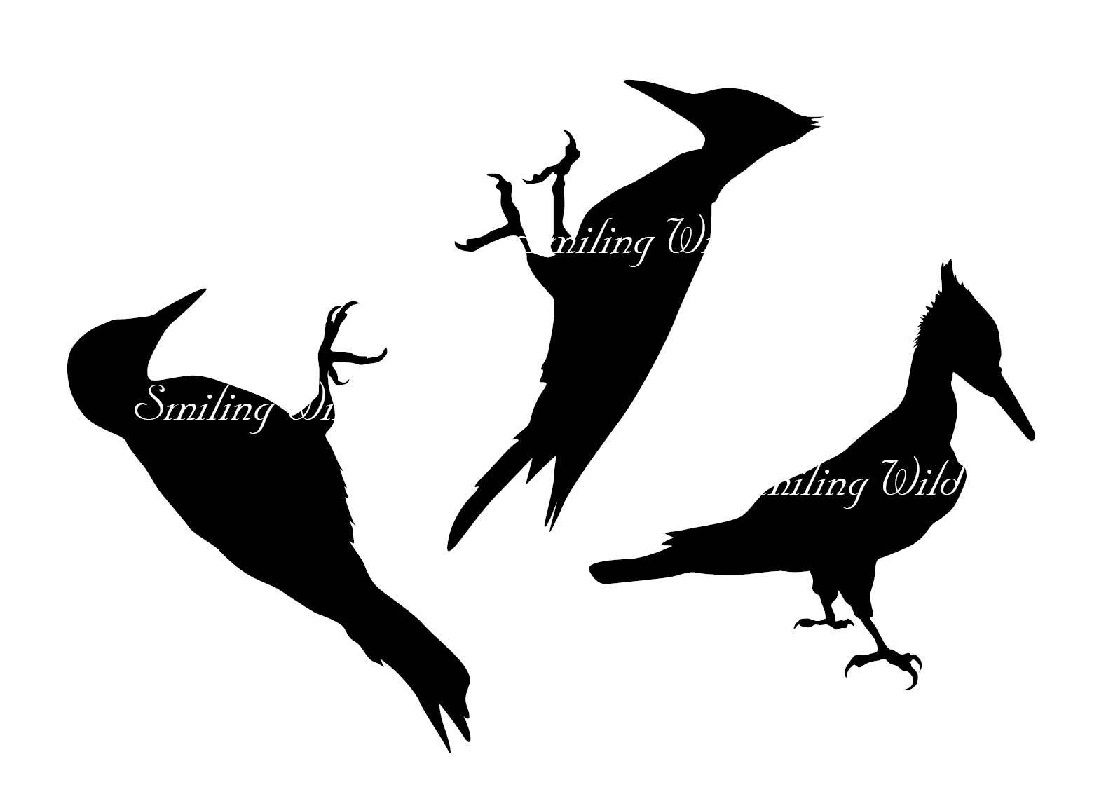 1588x1123 Woodpecker Svg Silhouette Clipart Cut Out File Flying Woodpecker