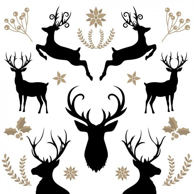 626x626 Deer Vectors, Photos And Psd Files Free Download