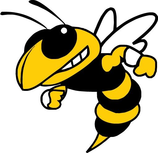 Image result for yellow jacket mascot