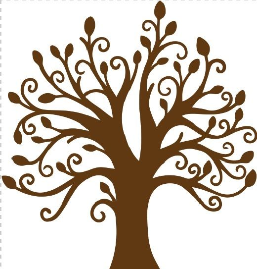 520x543 25 Best Trees Images On Tree Of Life, Family Trees