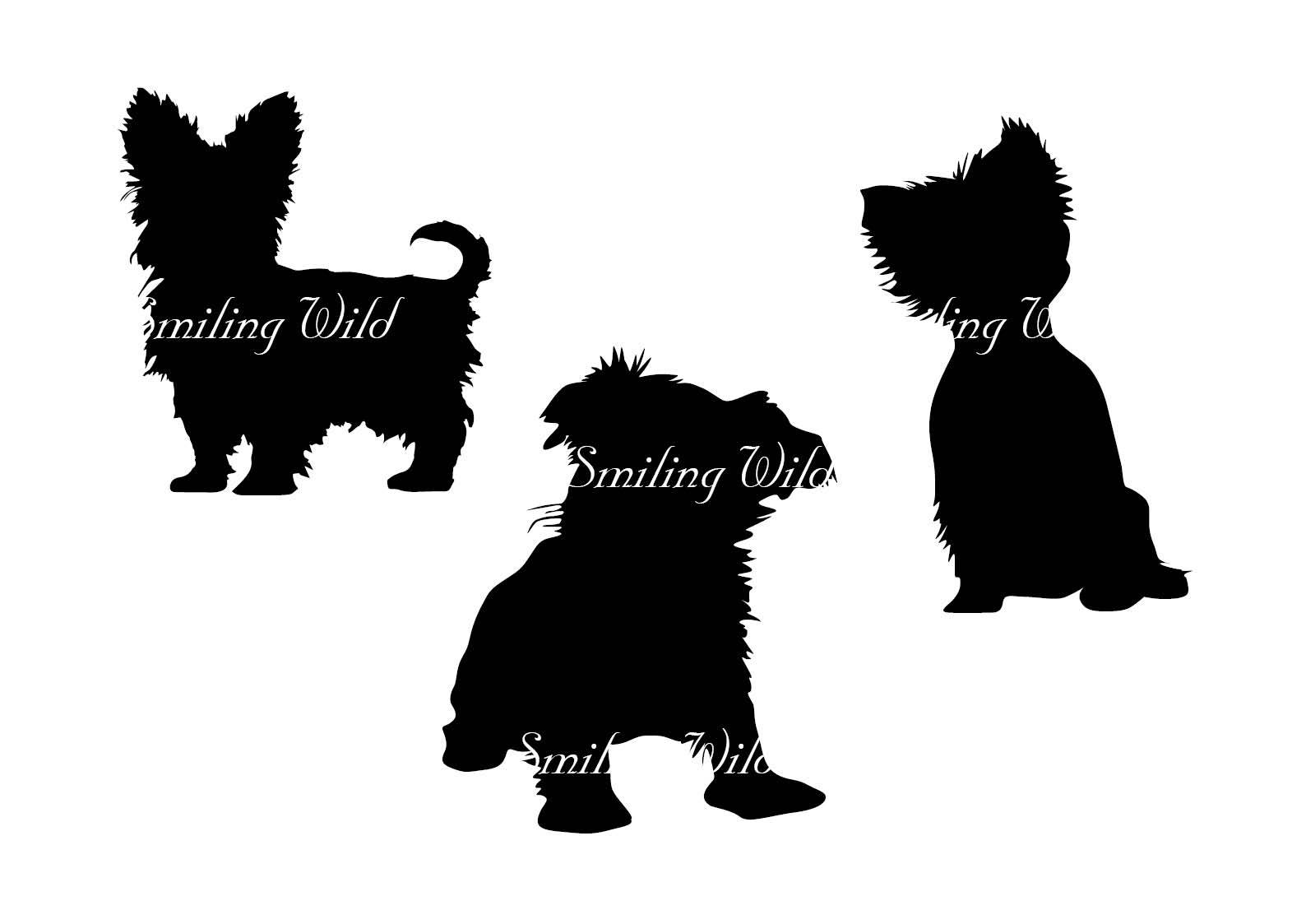 1588x1123 Yorkshire Terrier Svg Yorkie Silhouette Cut File Yorkshire Terrier