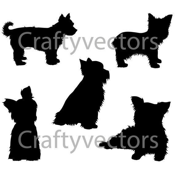 570x570 Yorkshire Terrier Dog Svg Silhouettes