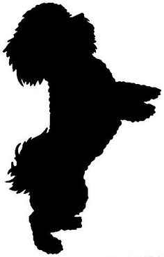 236x370 Silhouette Yorkshire Terrier