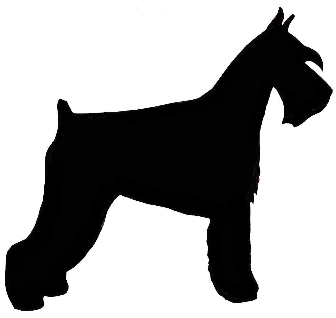 1143x1079 Scottish Terrier