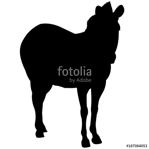500x500 Zebra Silhouette Vector Graphics Stock Image And Royalty Free