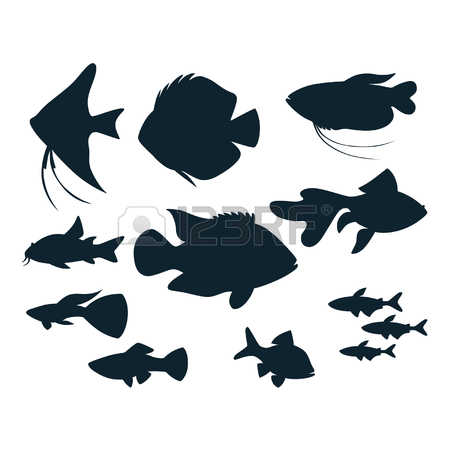 450x450 Image Result For Cichlid Silhouette Aquarium Hood