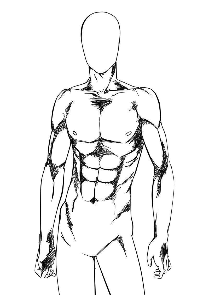 800x1132 Cuerpo Humano