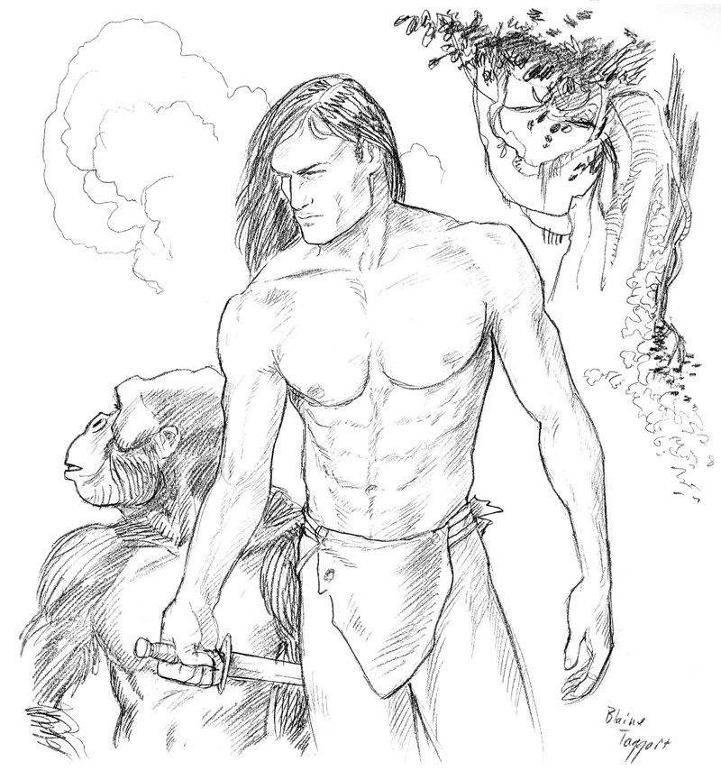 800x855 Tarzan Drawing Photo Drawing Skill