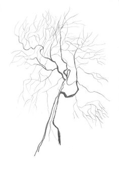 236x333 Abstract Pencil Drawing Surreal Tree Simple By Intuicio On Etsy