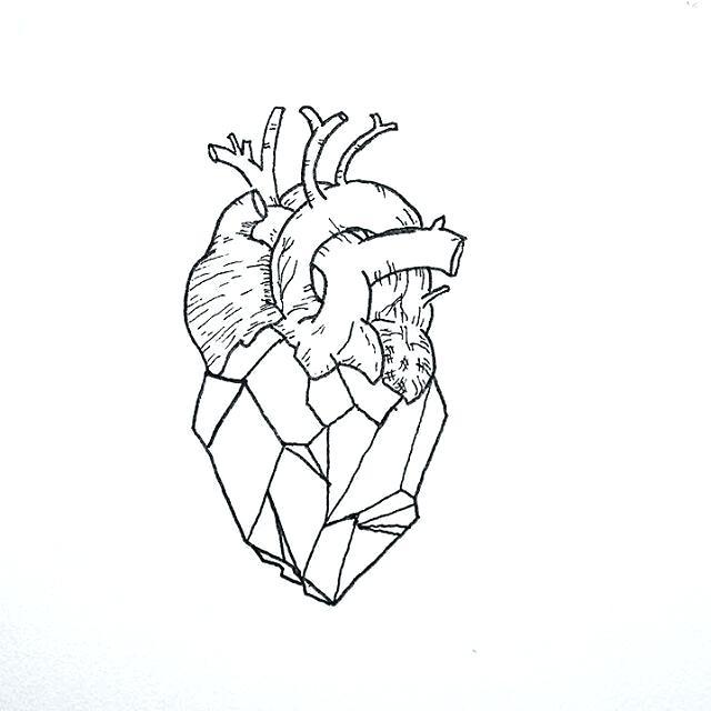 640x640 Anatomical Heart Outline A Geometric Heart Tattoo Idea Anatomical