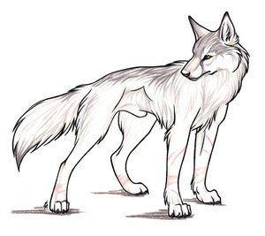 300x267 105 Best Game Wolf Images On Werewolf, Fox And Wild