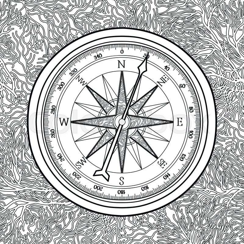 800x800 Graphic Wind Rose Compass Drawn In Line Art Style. Nautical Vector