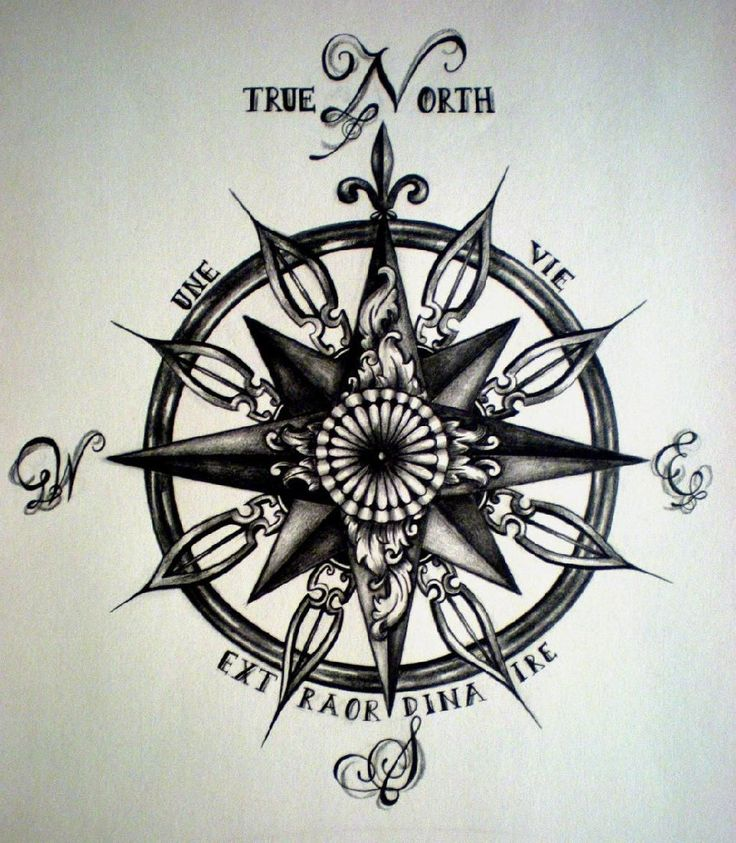 736x843 181 Best Compass Images On Compass, Royalty And Stock