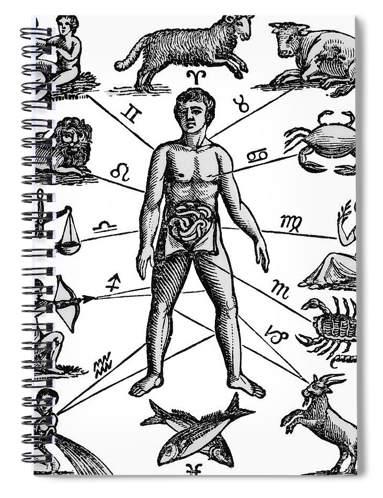 770x1000 Zodiac Man Drawing Relating Astrology Spiral Notebook For Sale By