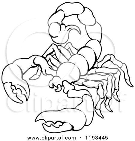 450x470 Best 11 Drawings Images On Zodiac Mind, Zodiac Pool