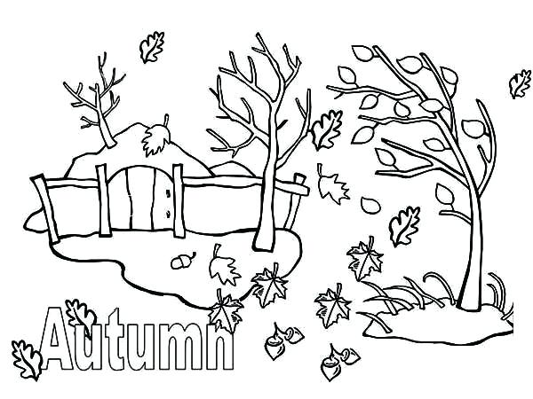 600x450 Autumn Season Autumn Leaf Coloring Page Autumn Season