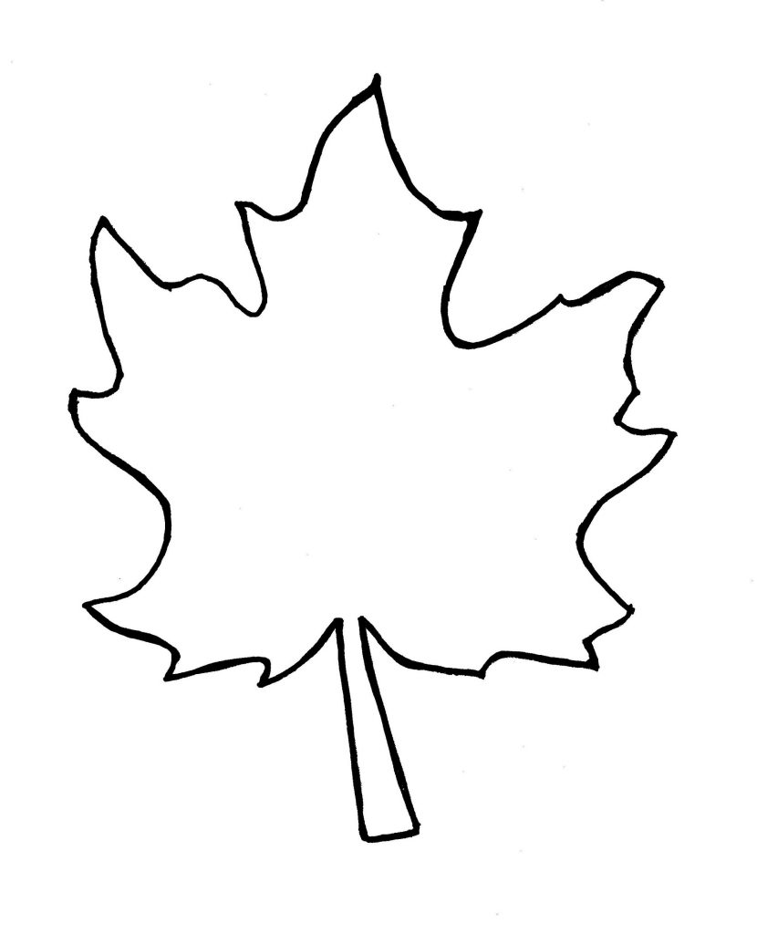 830x1024 Fall Leaves Outline