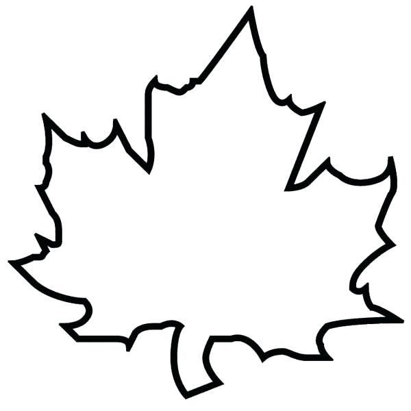 600x600 Also Maple Autumn Leaf Outline Coloring Page Free Autumn Leaf