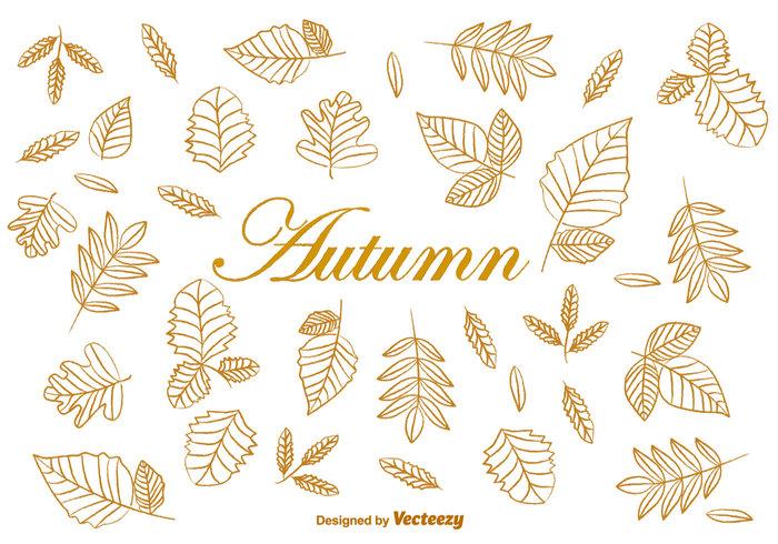 700x490 Doodle Autumn Brown Leaves Vectors 113033
