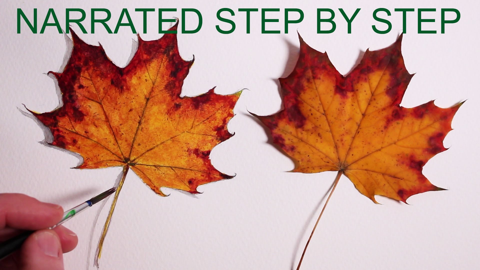 1920x1080 How To Draw A Leaf Narrated Step By Step