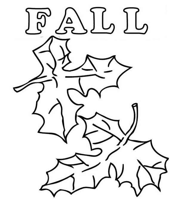 600x670 How To Draw Autumn Leaves Coloring Page Color Luna