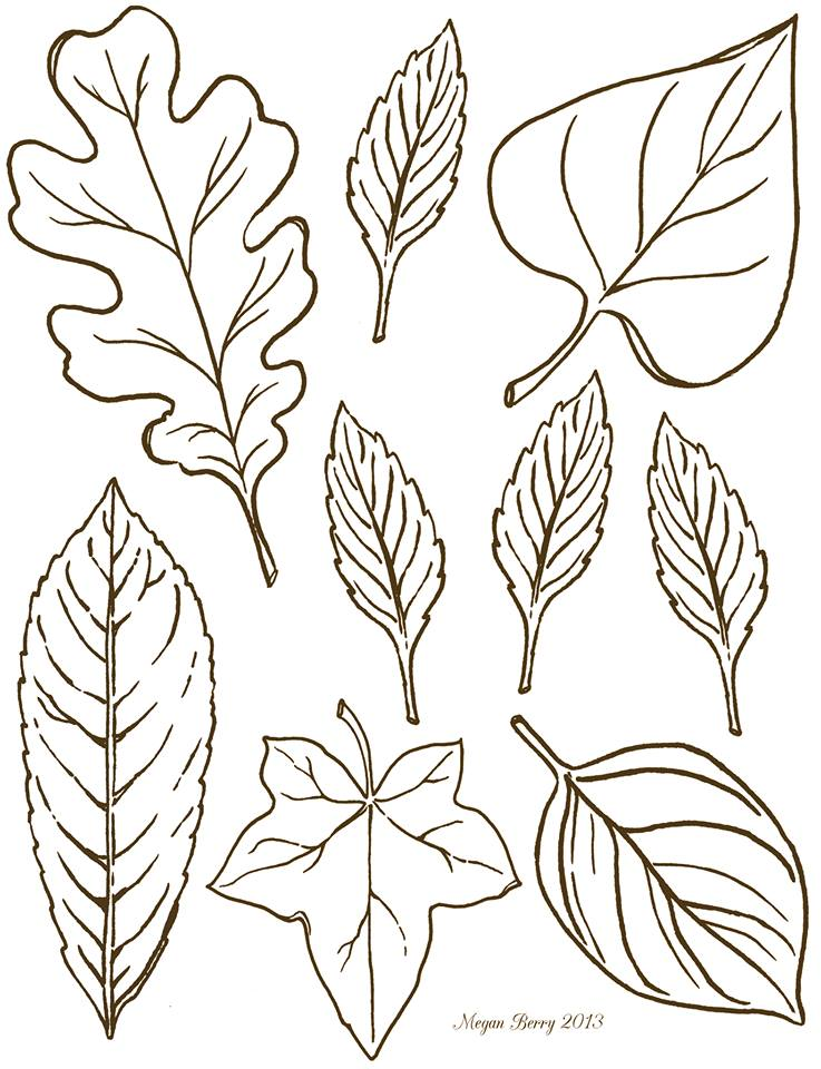 737x960 Collection Of Autumn Leaves Line Drawings High Quality, Free