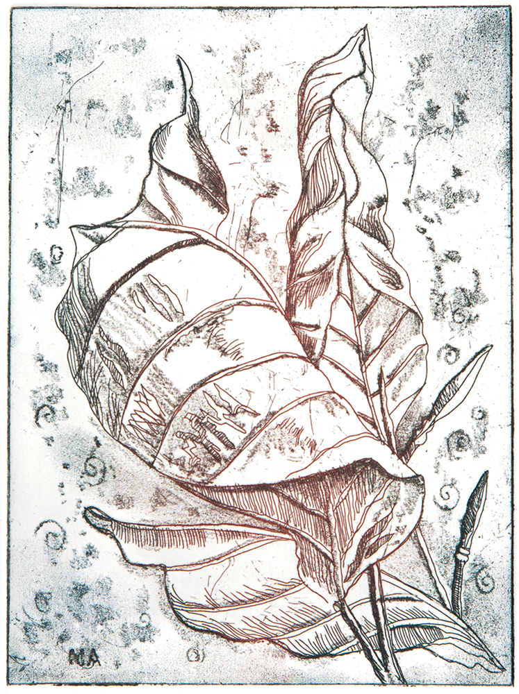 747x1000 Dry Point Autumn Leaves Mark Anstey Prints