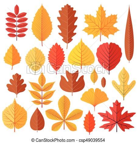450x470 Set Of Tree Autumn Leaves Isolated On The White. Cartoon