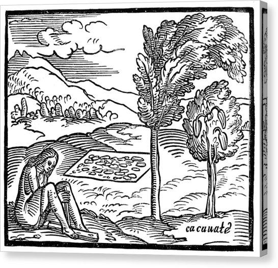 546x526 Aztec Woman Canvas Prints