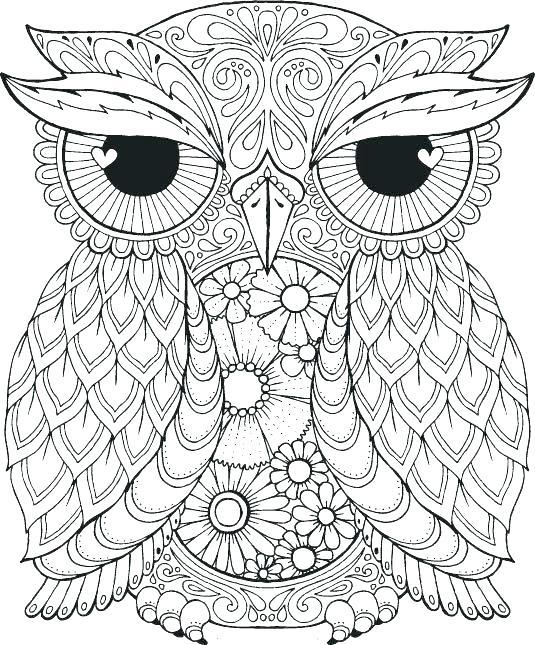 Ideas For Bird Art Backgrounds