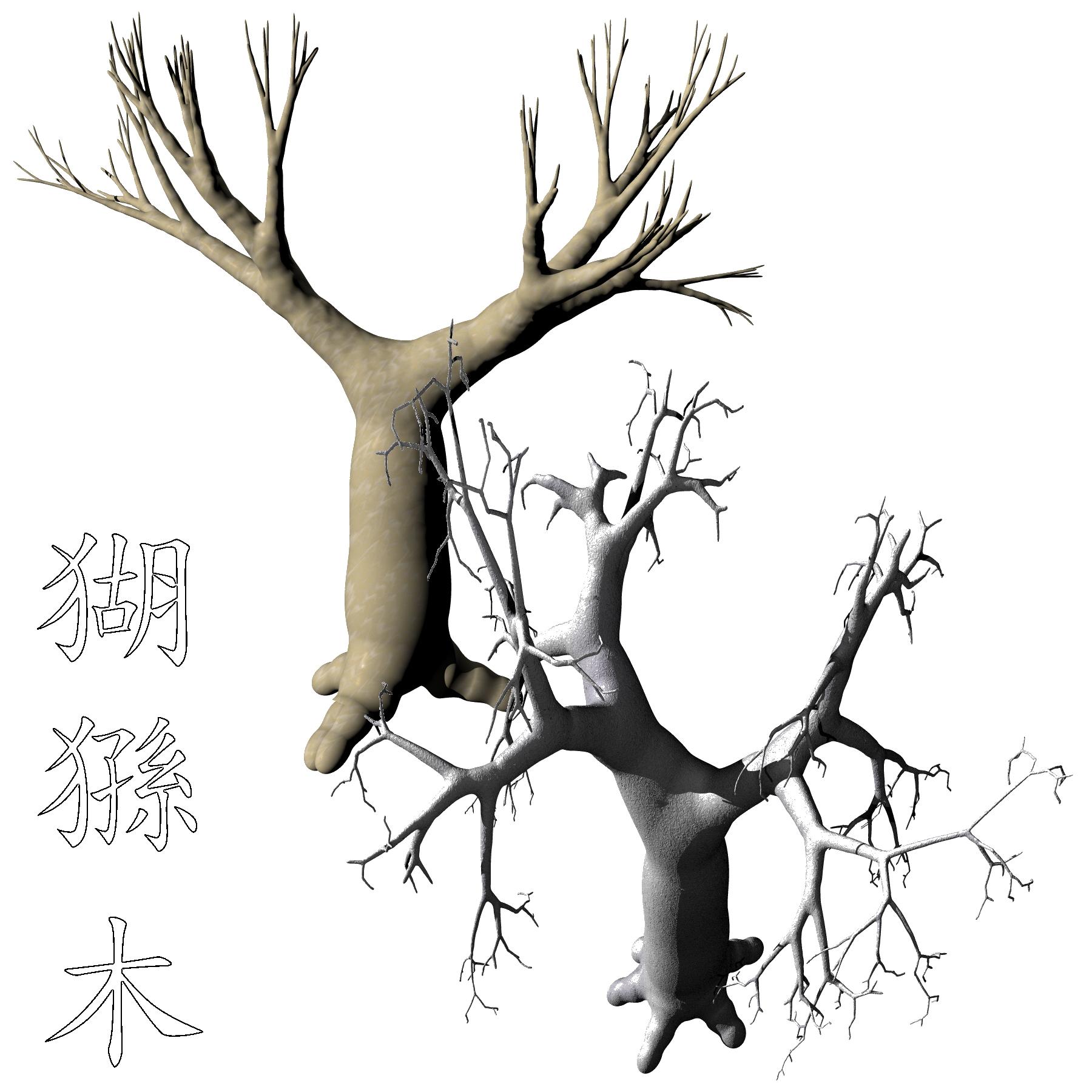 1800x1800 Dry Baobab Adansonia Tif png By Kanji Hanzi Centerrr