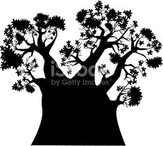 235x210 Baobab Tree